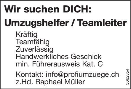 Umzugshelfer/Teamleiter, Profi Umzüge, gesucht