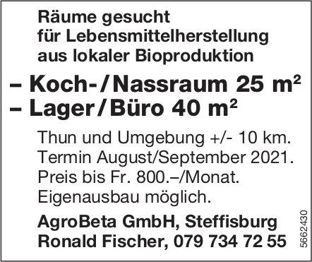 Koch- / Nassraum 25 m2, Lager / Büro 40 m2, Thun und Umgebung, zu mieten gesucht