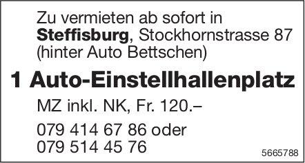 1 Auto-Einstellhallenplatz, Steffisburg, zu vermieten