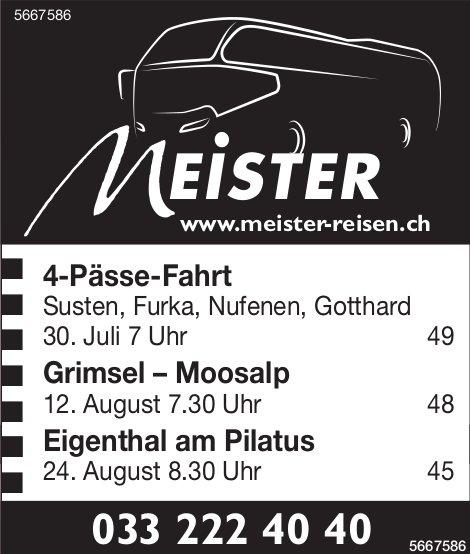 Meister Reisen - Programm & Events