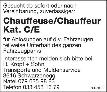 Chauffeuse/Chauffeur Kat. C/E, R. Kropf + Sohn Transporte und Muldenservice, Schwarzenegg, gesucht