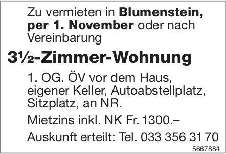 3½-Zimmer-Wohnung, Blumenstein, zu vermieten