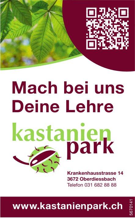 Mach bei uns Deine Lehre - Kastanienpark, Oberdiessbach