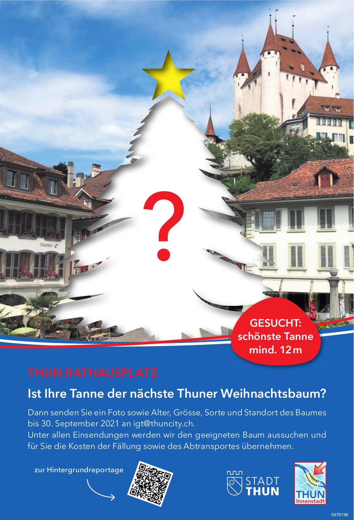 Stadt Thun - Ist Ihre Tanne der nächste Thuner Weihnachtsbaum? bis 30. September