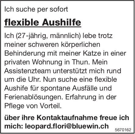 Flexible Aushilfe, Privathaushalt, Thun, gesucht