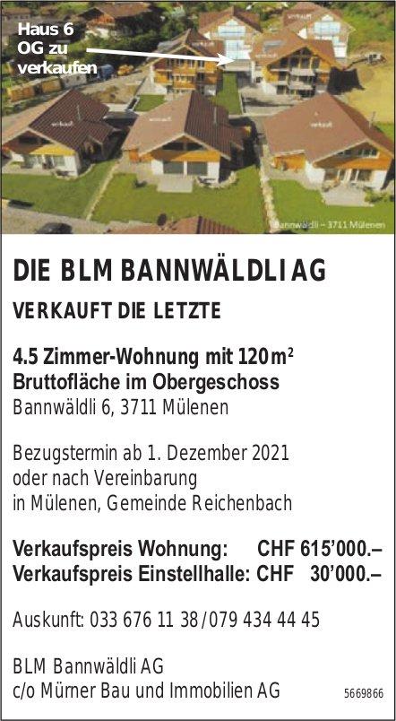 Die letzte 4.5 Zimmer-Wohnung mit 120 m2 Bruttofläche im Obergeschoss, Mülenen, zu verkaufen
