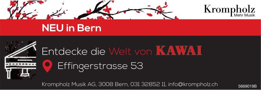 Krompholz Musik AG, Bern - Entdecke die Welt von KAWAI