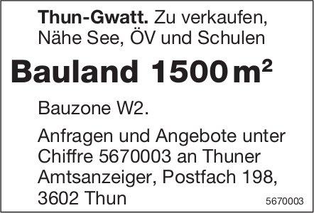Bauland 1500 m2, Thun-Gwatt, zu verkaufen