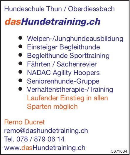 DasHundetraining.ch, Hundeschule Thun / Oberdiessbach - Laufender Einstieg in allen Sparten möglich