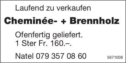 Cheminée- + Brennholz laufend zu verkaufen