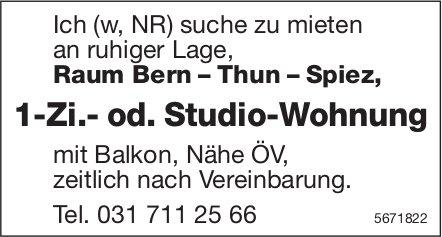 1-Zi.- od. Studio-Wohnung, Raum Bern–Thun–Spiez, zu mieten gesucht