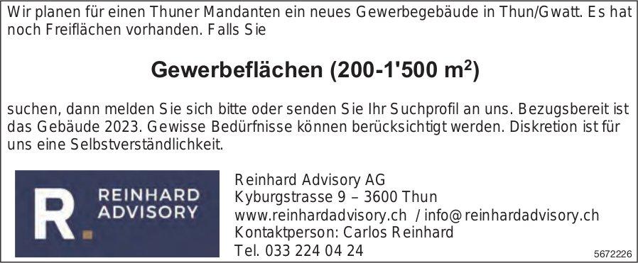 Gewerbeflächen (200-1'500 m2), Thun-Gwatt, zu vermieten