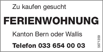 Ferienwohnung Kanton Bern oder Wallis, zu kaufen gesucht
