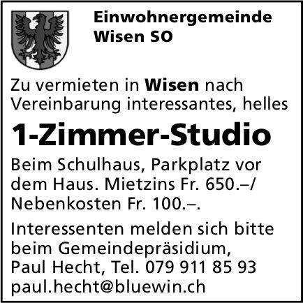 1-Zimmer-Studio, Wisen,  zu vermieten