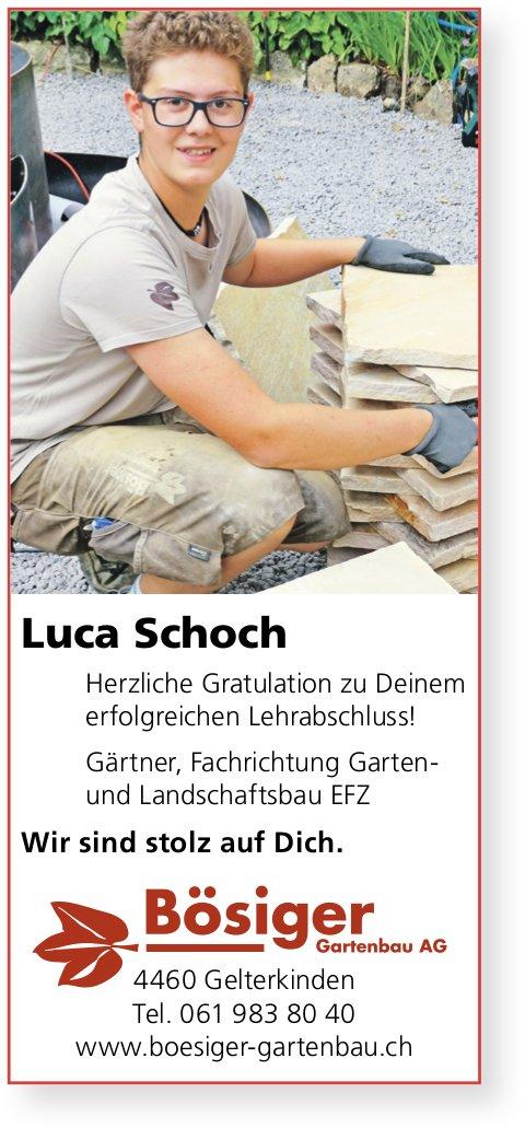 Bösiger Gartenbau AG, Gelterkinden - Herzliche Gratulation an Luca Schoch zur erfolgreichen LAP