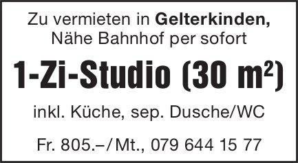 1-Zi-Studio (30 m ), Gelterkinden, zu vermieten