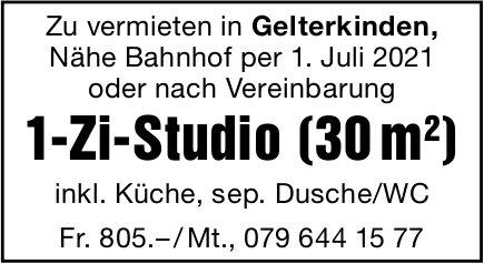 1-Zi-Studio (30 m2), Gelterkinden, zu vermieten