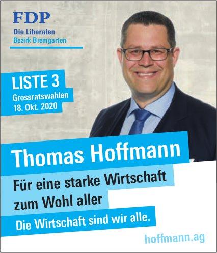 Thomas Hoffmann in den Grossen Rat