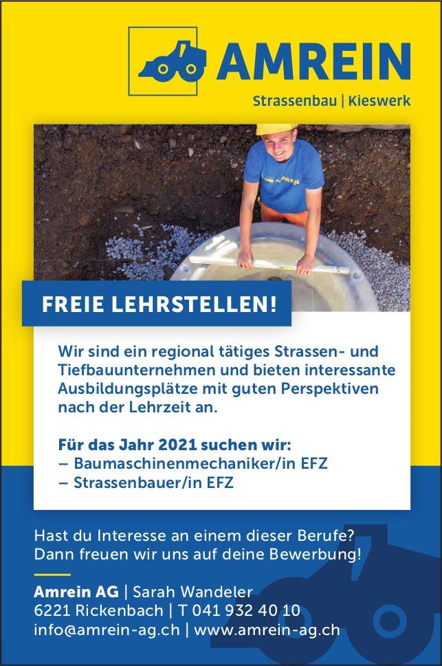 Freie Lehrstellen!, Amrein AG, Rickenbach, zu vergeben