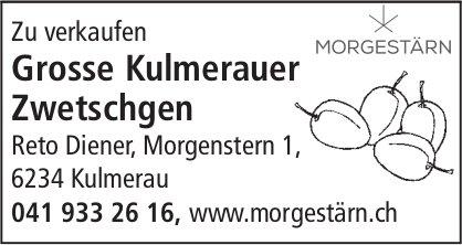 Reto Diener, Kulmerau - Grosse Kulmerauer Zwetschgen zu verkaufen