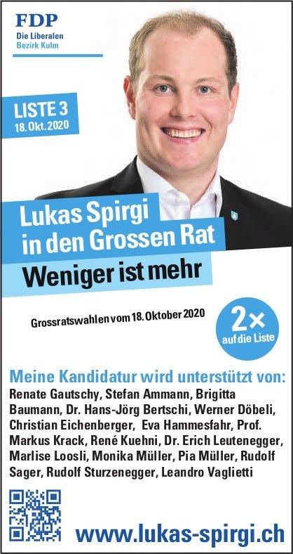 FDP - Lukas Spirgi in den Grossen Rat