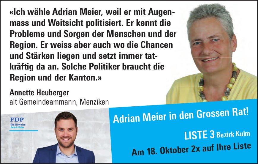 Adrian Meier in den Grossen Rat!